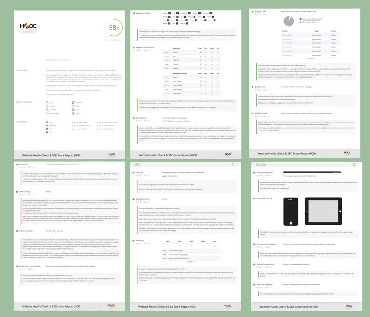 SEO Website Report